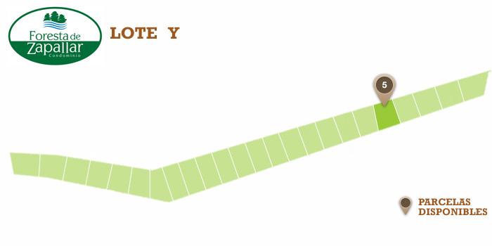mapa_Y