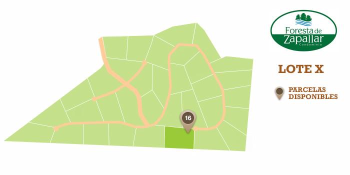 mapa_X
